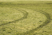 rally-field-2-shutterstock_1089144