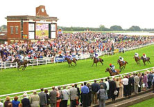 ripon_races
